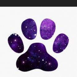 Salted Galaxy avatar