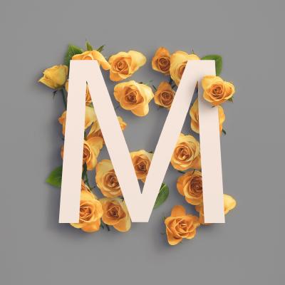 Mellow Design Lab avatar