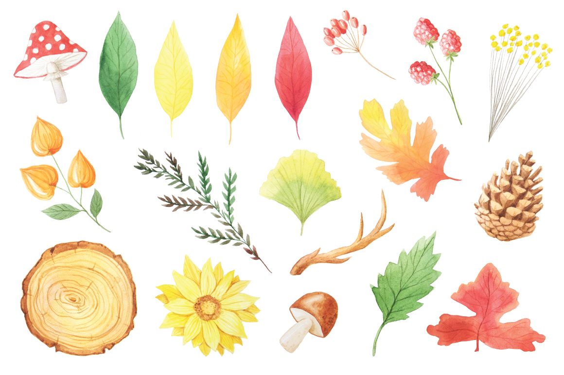 The Watercolor Autumn Collection  example image 3