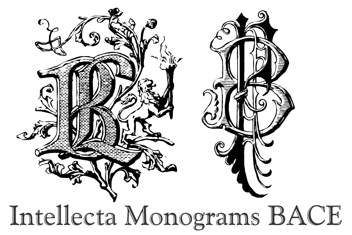 Intellecta Monograms BACE example image 2
