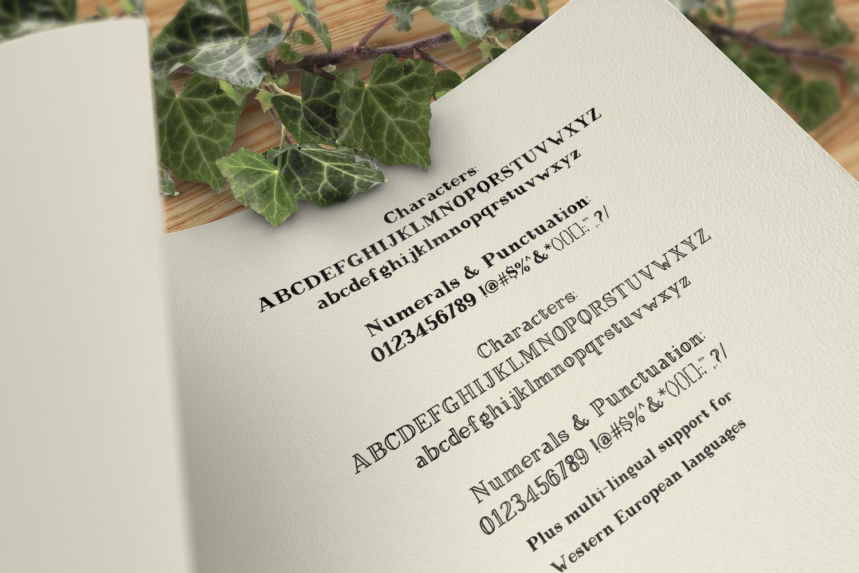Magnolia Plantation Hand-lettered Serif Font Duo example image 2