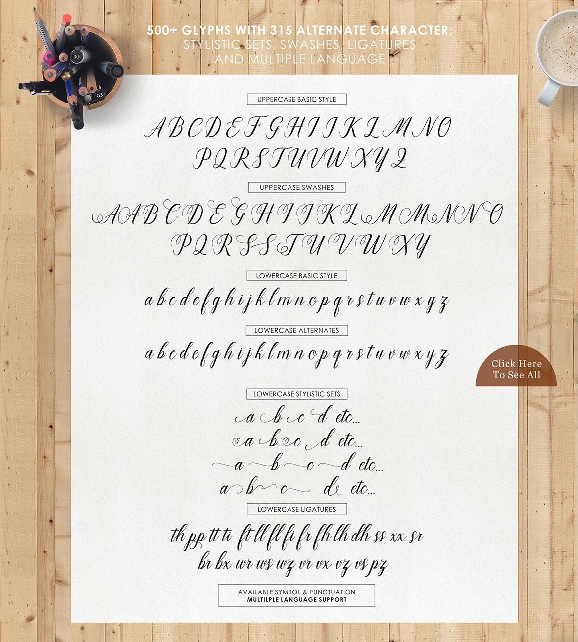 Marioline Script example image 8