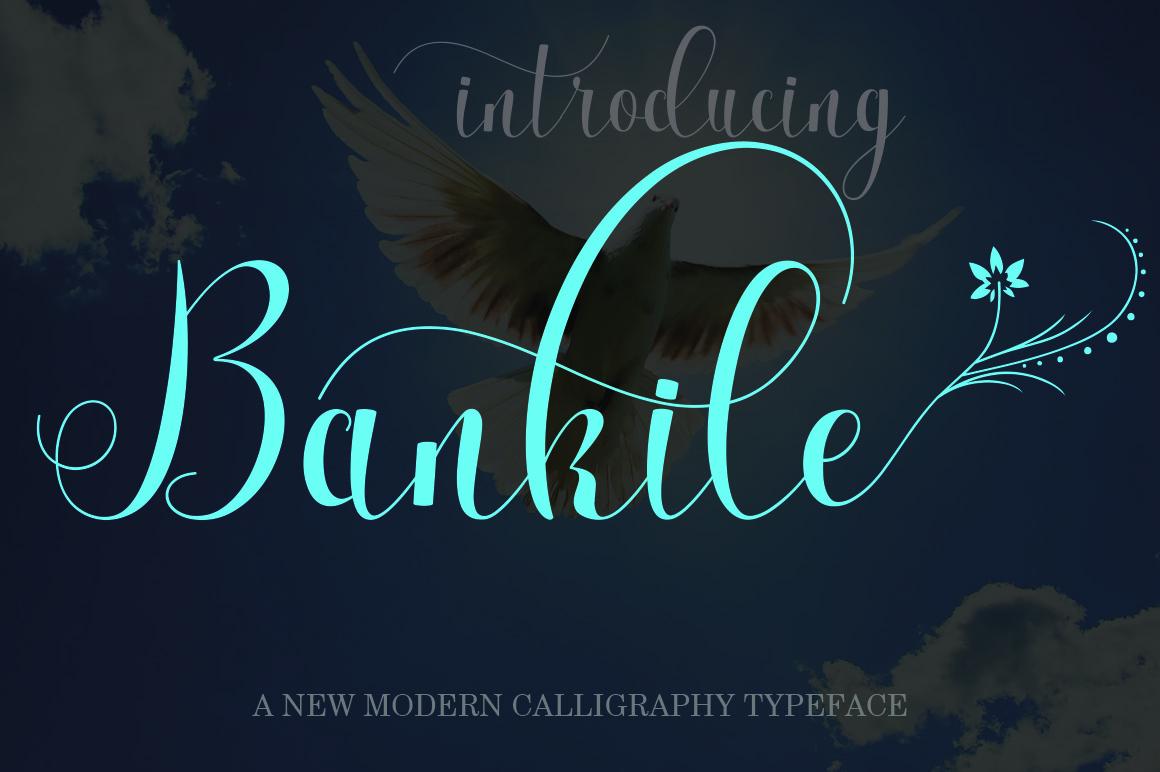 Bankile example image 1