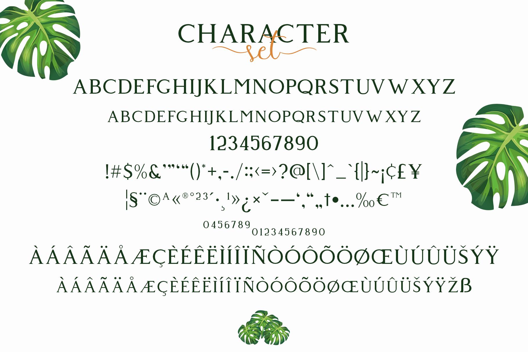 Giveny - Classy Serif Font example image 5