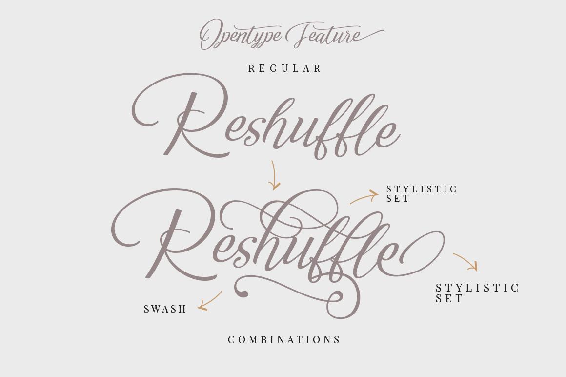 Reshuffle Script example image 6