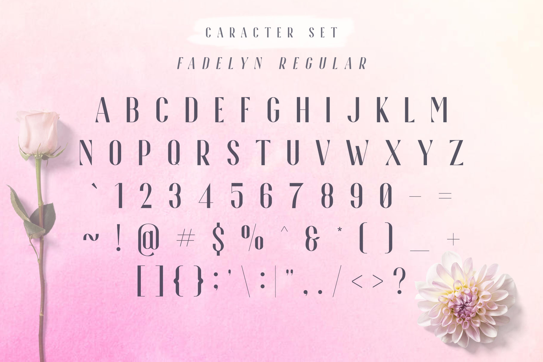 Fadelyn - Font Duo example image 6