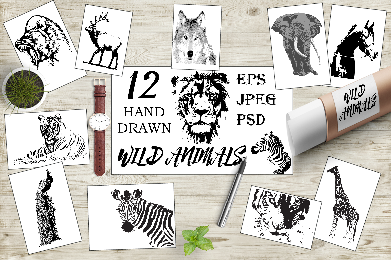 Hand-drawn wild animals example image 1