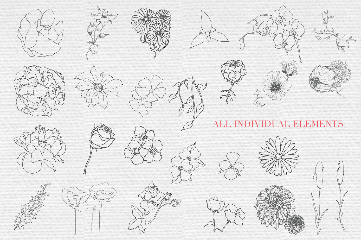 Hand drawn Sketched Flower Vectors example image 2