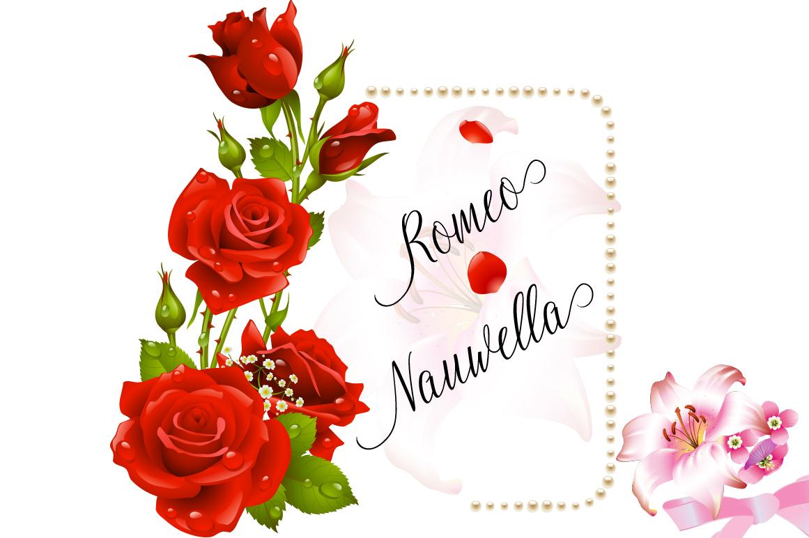 Calligraphy Font Bundles example image 28