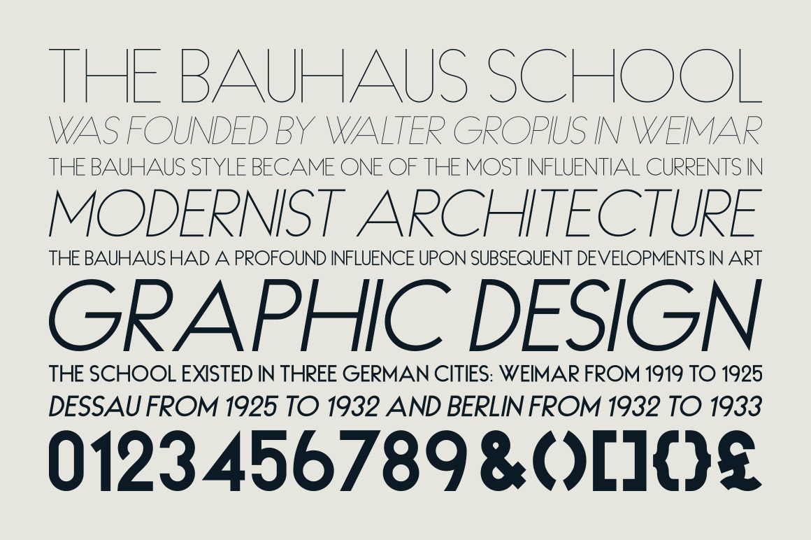 HAUS Sans Extra Bold example image 5