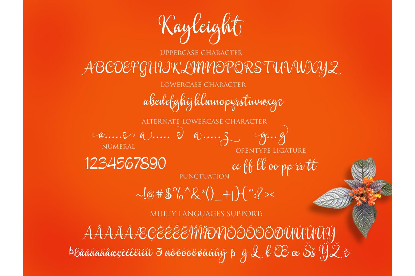 Kayleight example image 11