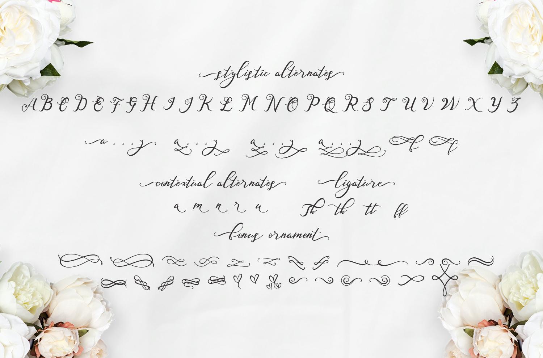 Nazeefa Script Font ( February Sale ) example image 6