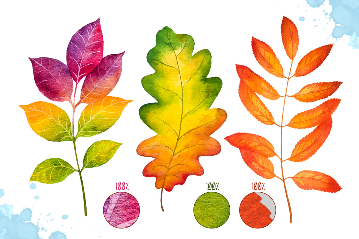 Autumn leaves. Watercolor set. example image 3