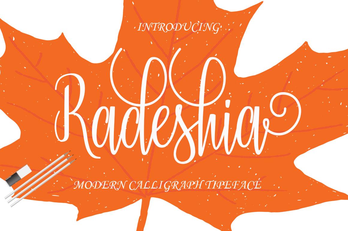 Calligraphy Font Bundles example image 3