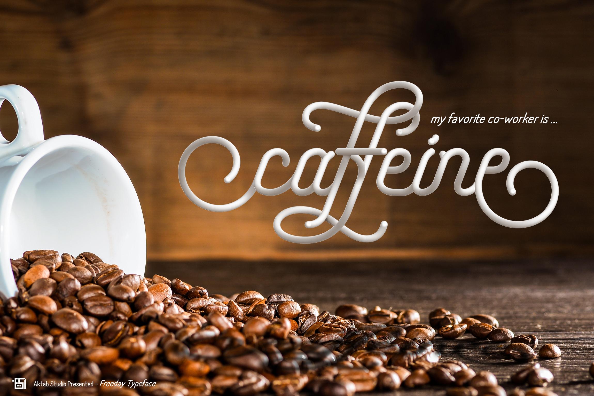 Freeday Script & Sans Font example image 5
