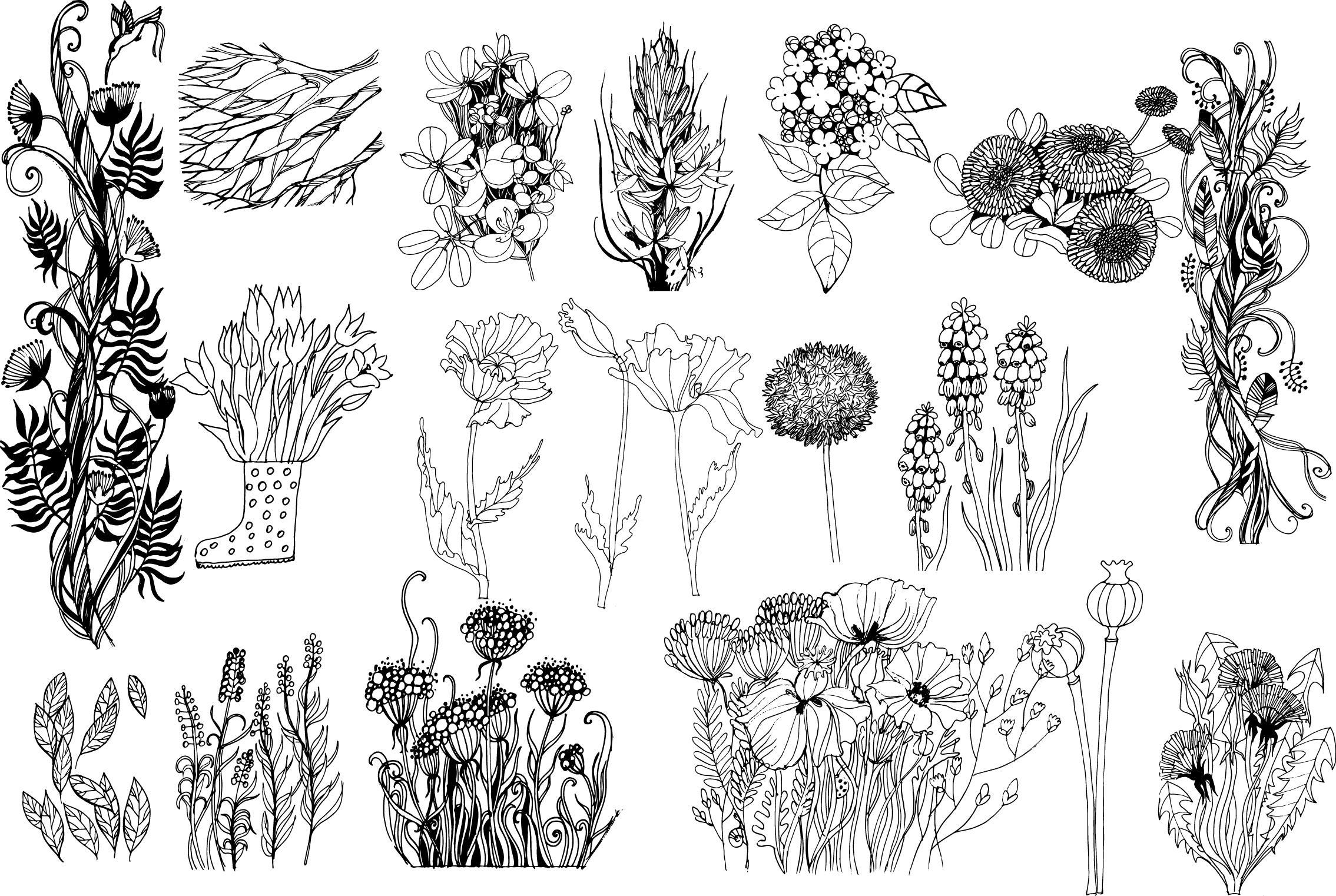 Floral sketch & watercolor example image 3