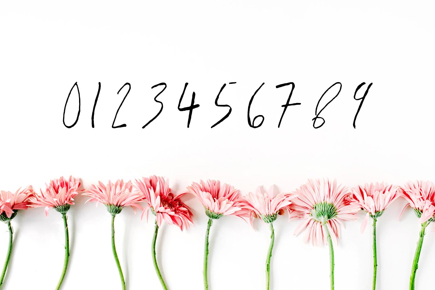 Jaraad Script Typeface example image 4
