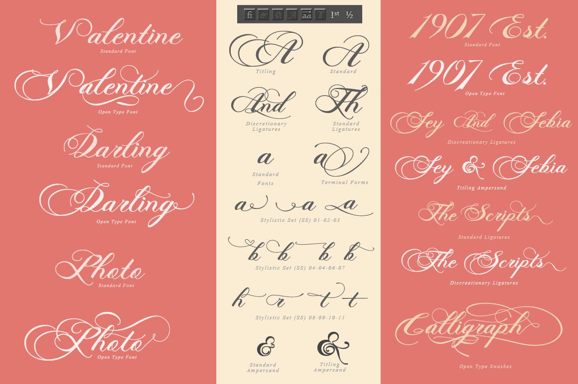Photograph - Script Wedding Font example image 3