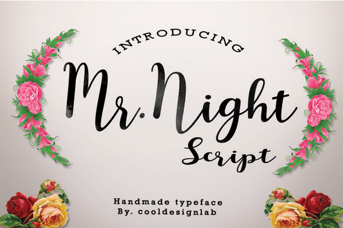 Mr.Night script example image 1