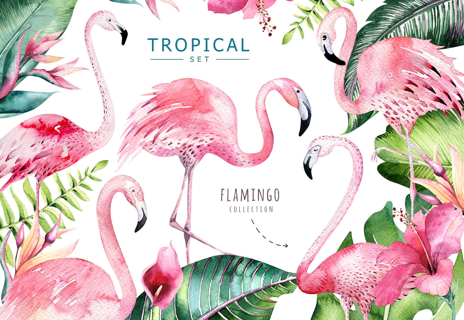 Tropical set II. Flamingo collection example image 1