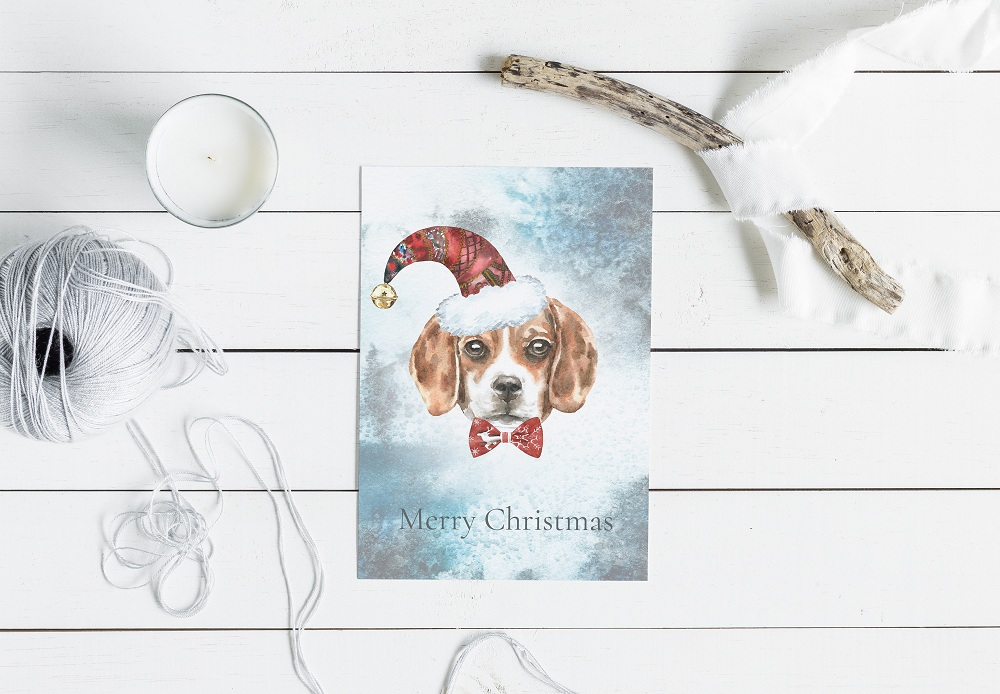 Christmas Animal Creator.Watercolor Dogs & Cats example image 7
