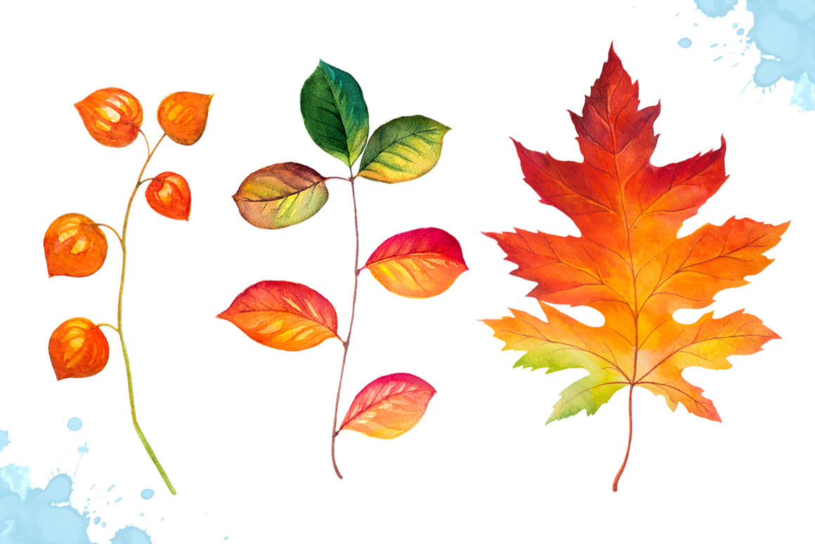 Autumn leaves. Watercolor set. example image 4
