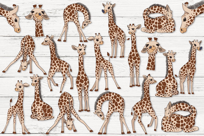 Baby Giraffes example image 2