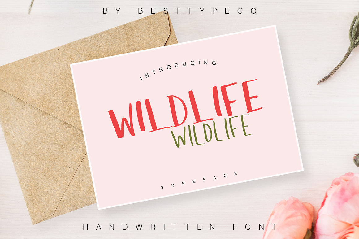 35in1 Font Bundle by BESTTYPECO example image 23