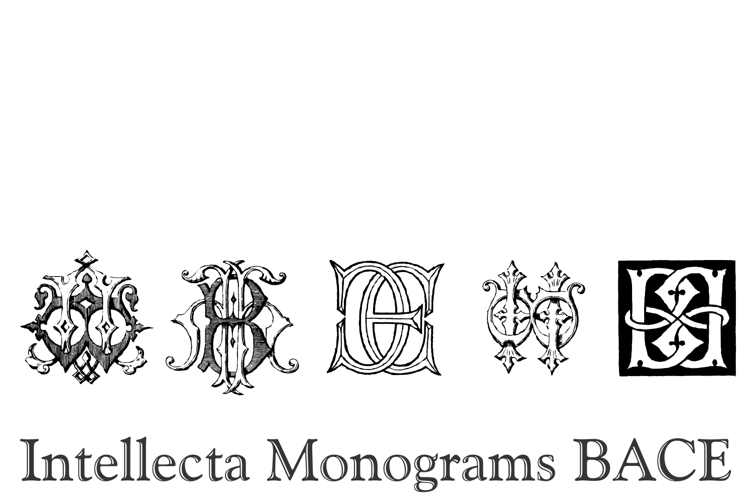 Intellecta Monograms BACE example image 5