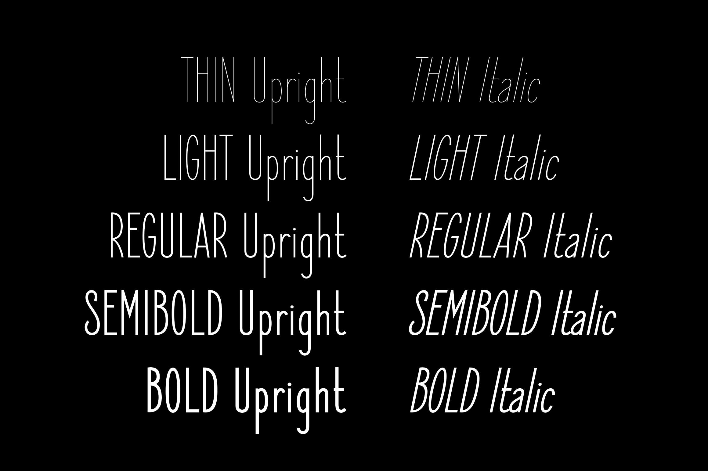 Elegant Sans Font Family example image 2