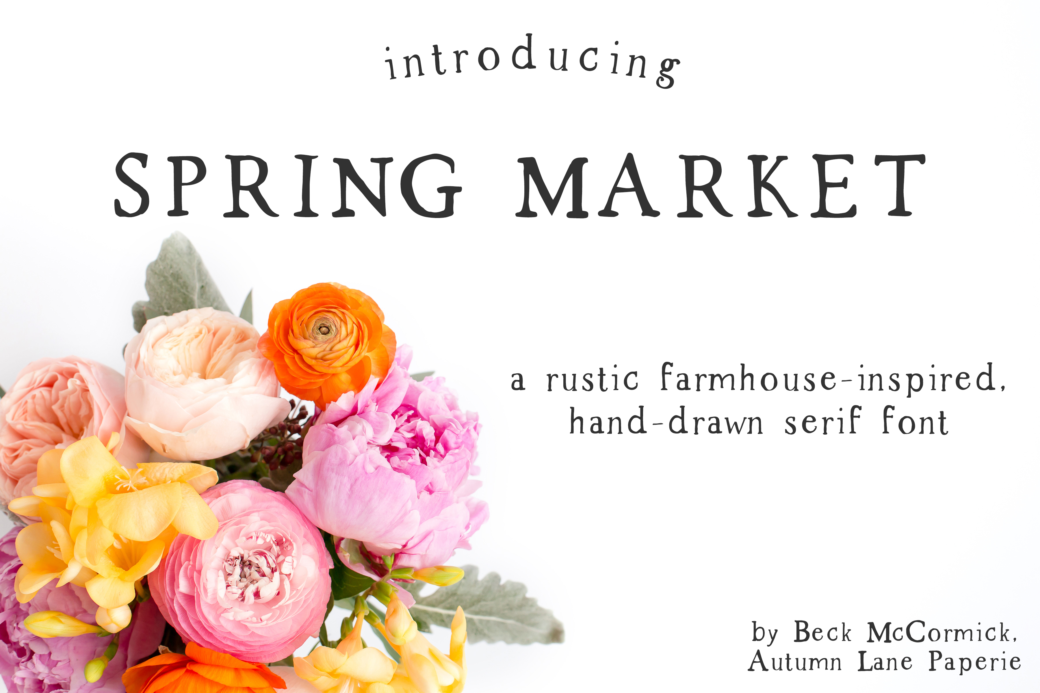 Spring Market - Rustic Serif Font example image 1
