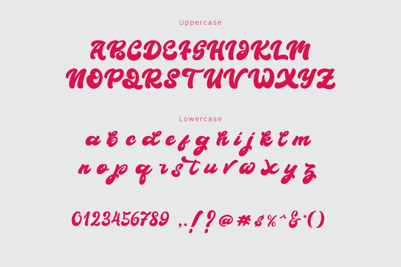 Boldie Script Typeface example image 8
