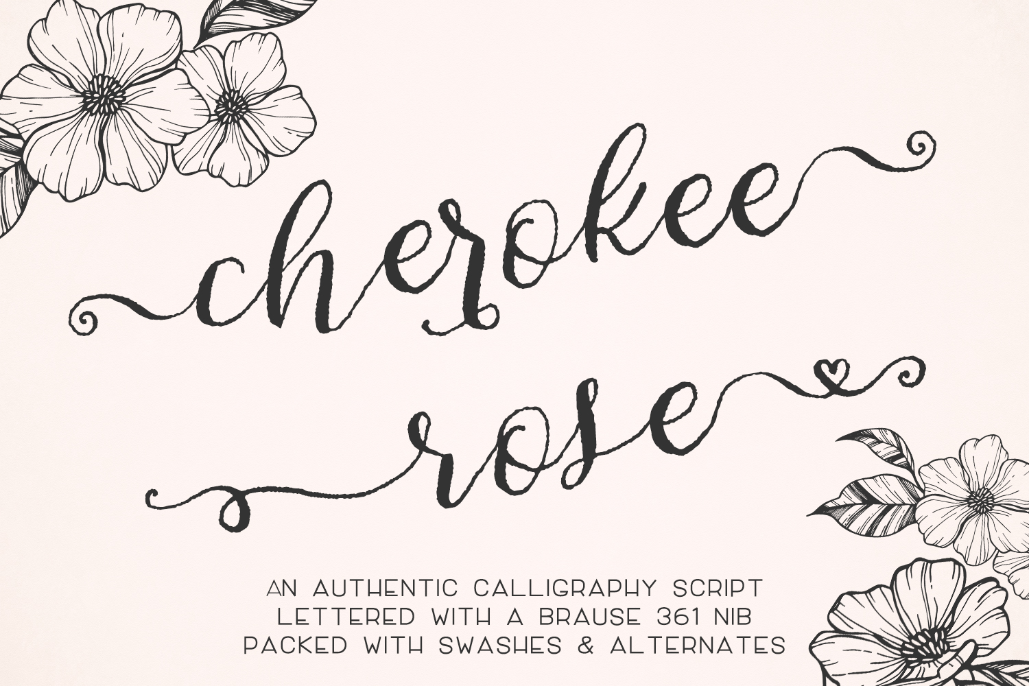 Calligraphy Fonts: Cherokee Rose Calligraphy Script By Bec