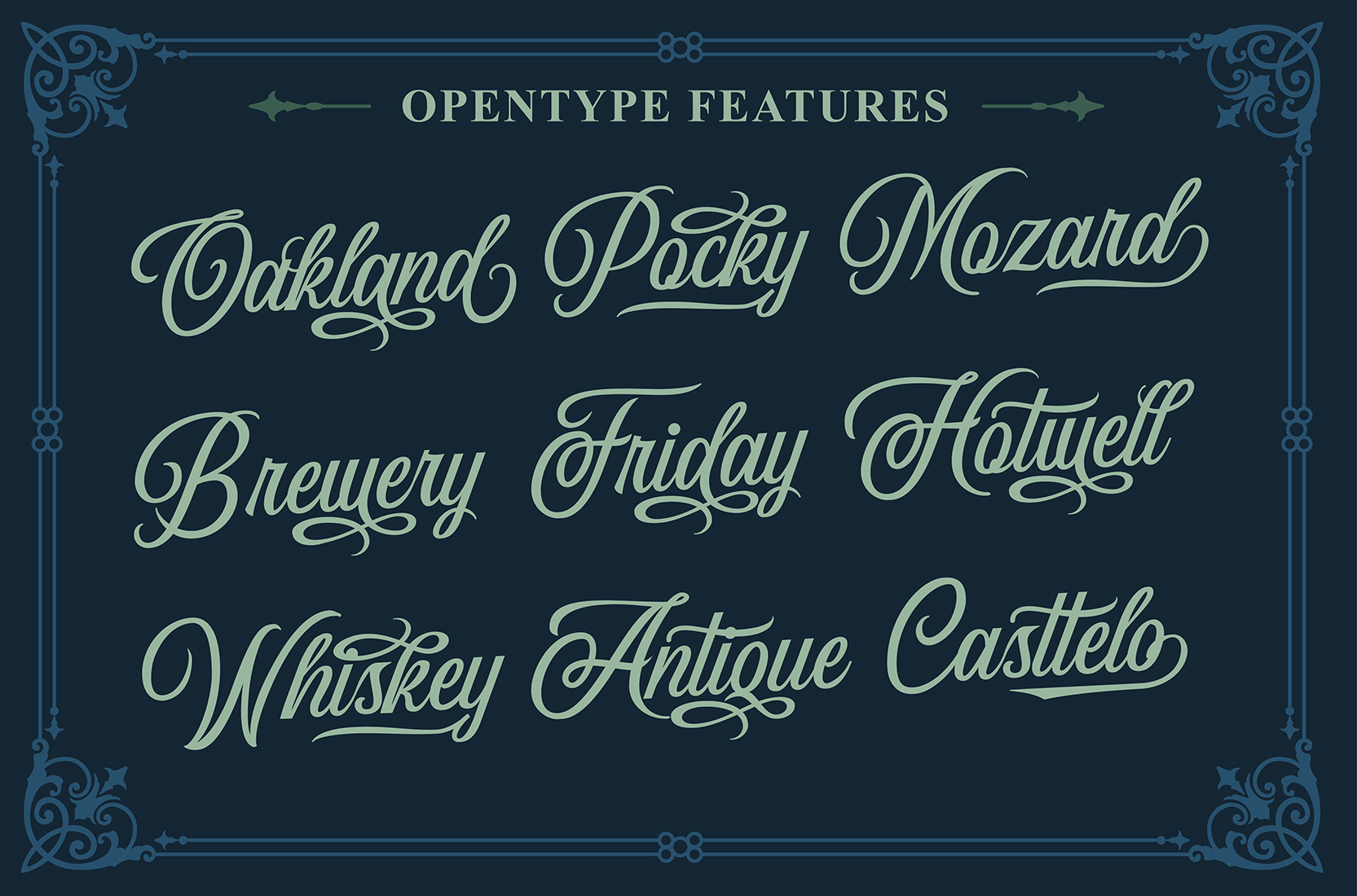Wildcats Typeface (40% off) example image 8