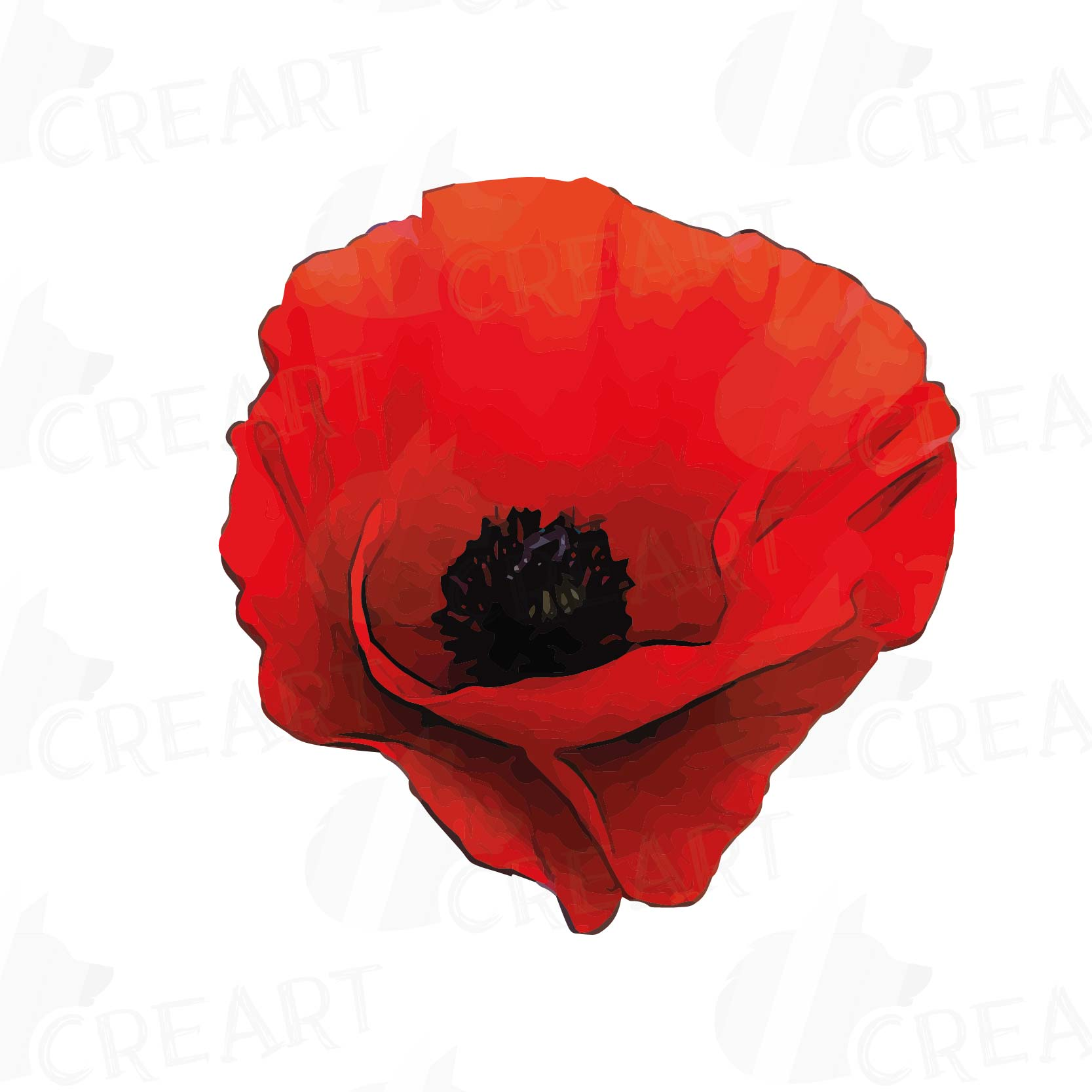 Watercolor Red Poppy Flower And Leaf Cl Design Bundles