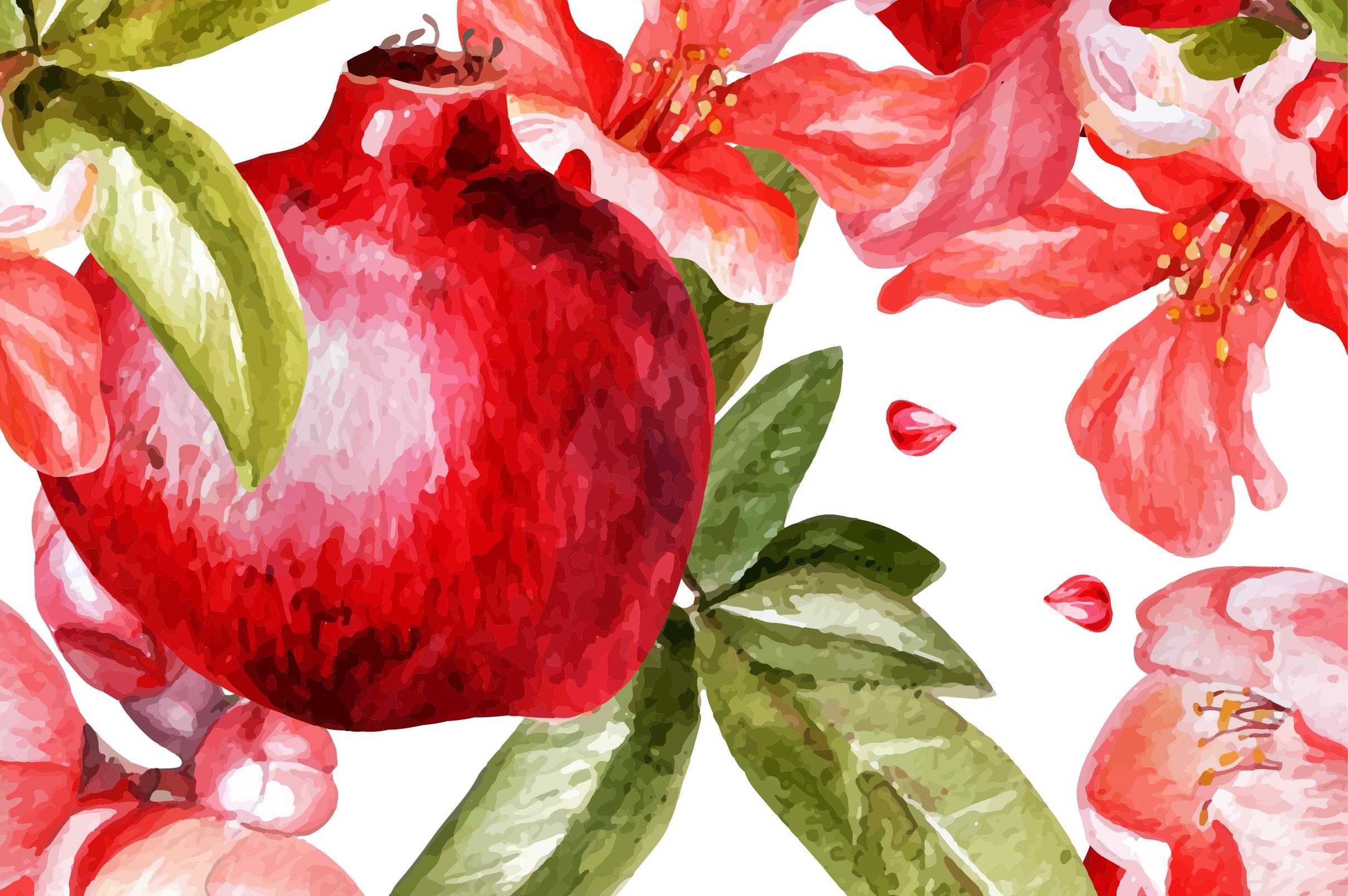 Beautiful watercolor pomegranates example image 3