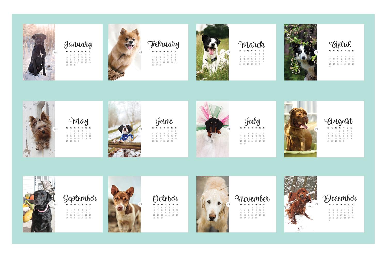 Calendar Dogs : Dog calendar by ibelina pirulina design bundles