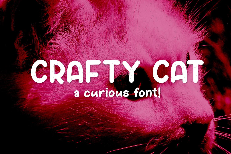 Crafty Cat example image 1