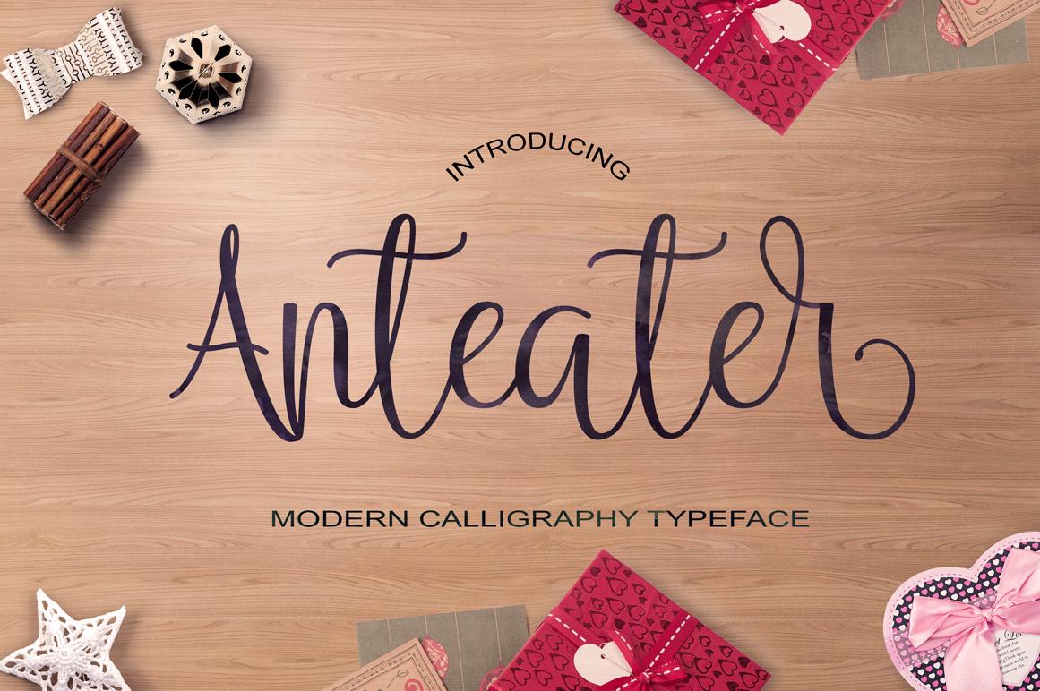 Calligraphy Font Bundles example image 12