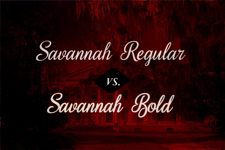 Sweet Home Savannah Font Duo example image 4
