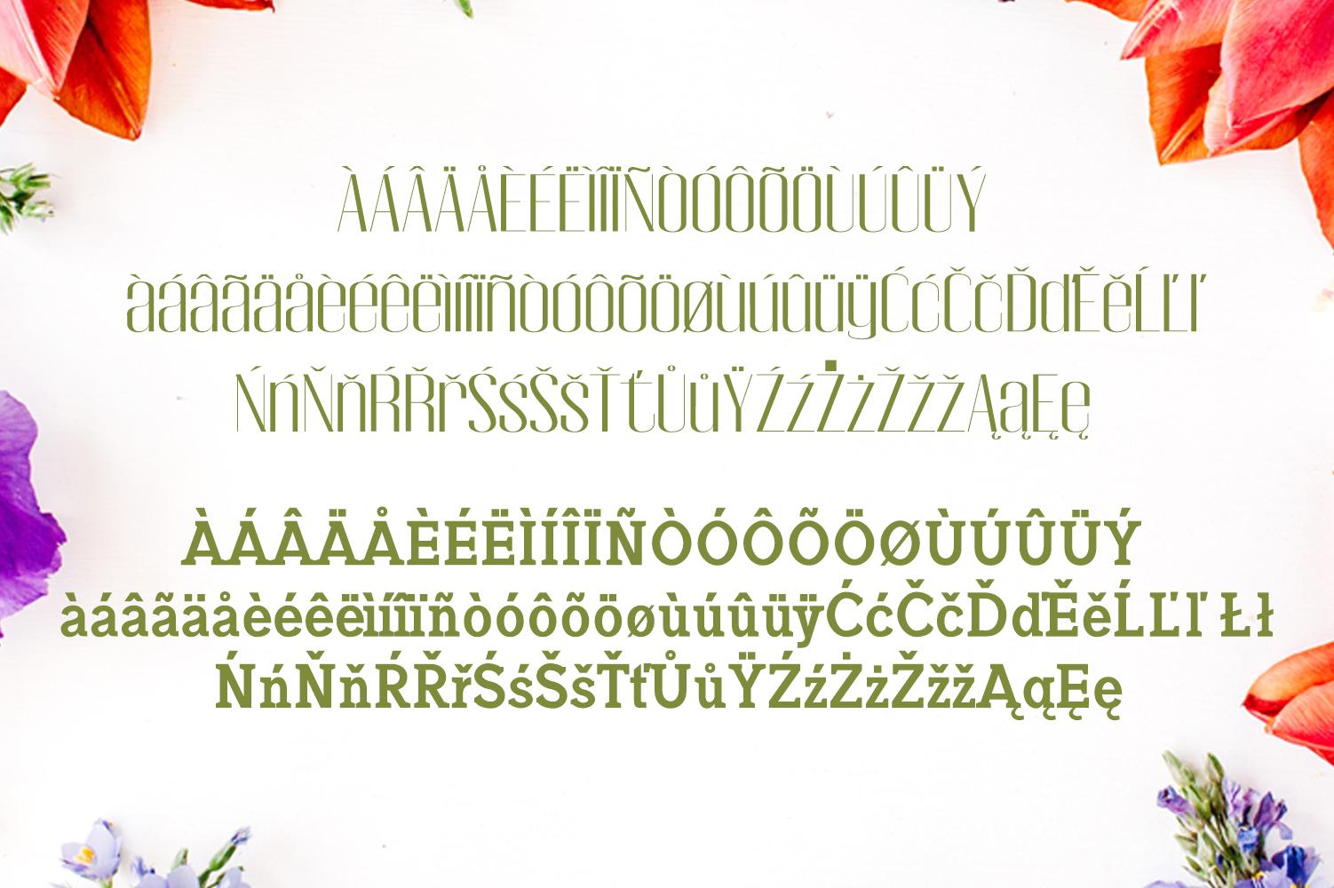 Jadrien Serif + Sans Duo 5 Font Pack example image 2
