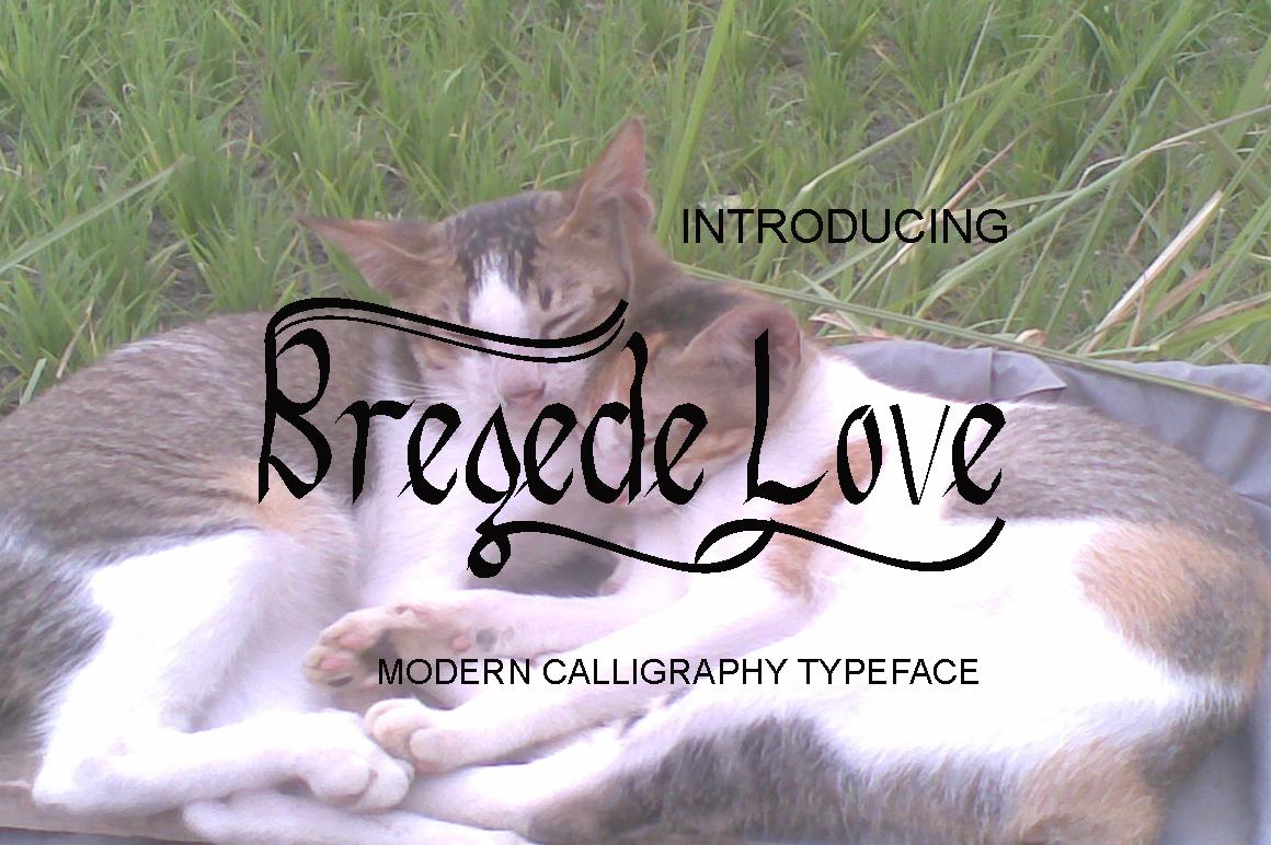 Bregede Love example image 1