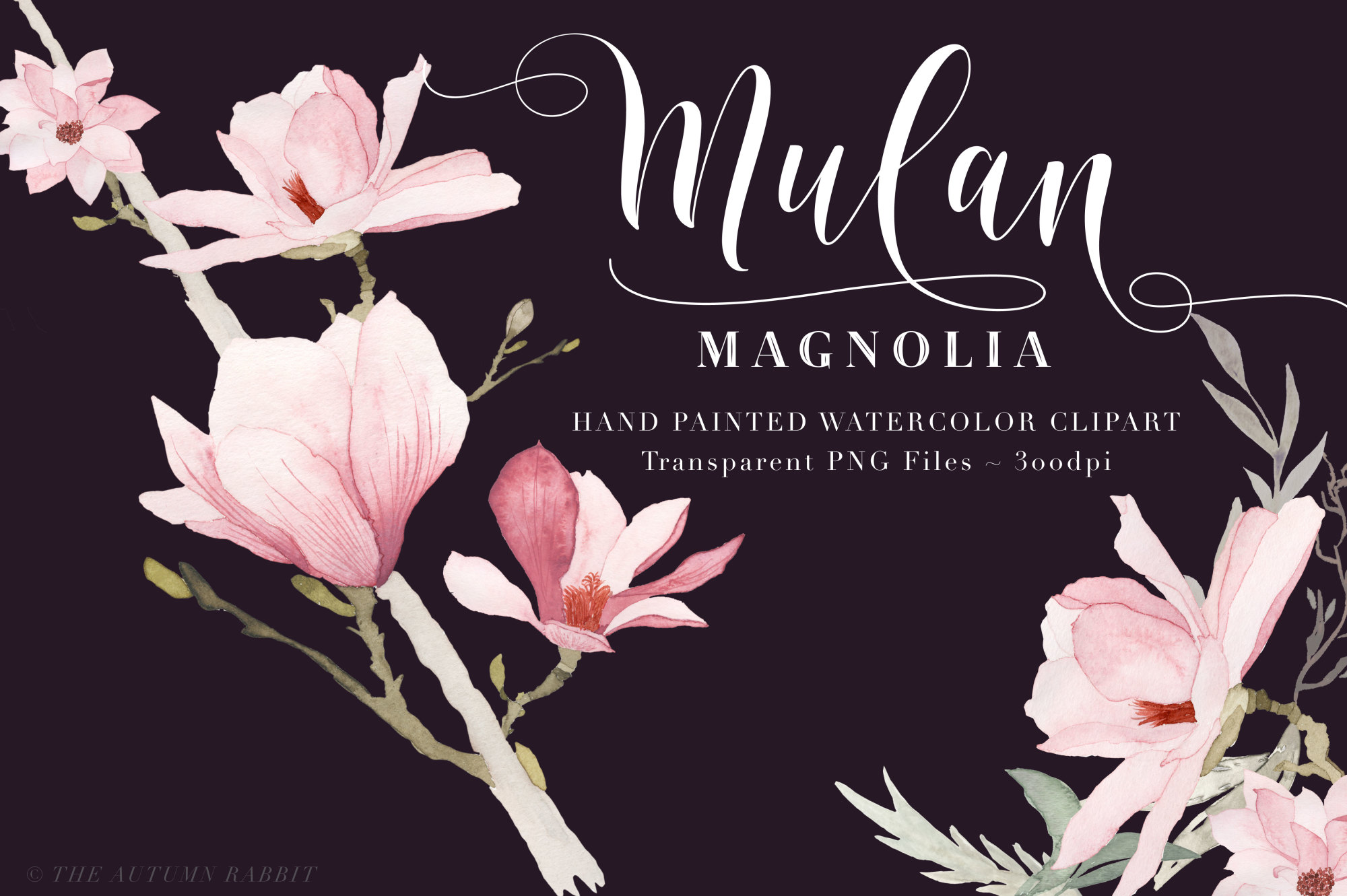 Watercolor Magnolia Floral Clipart example image 2
