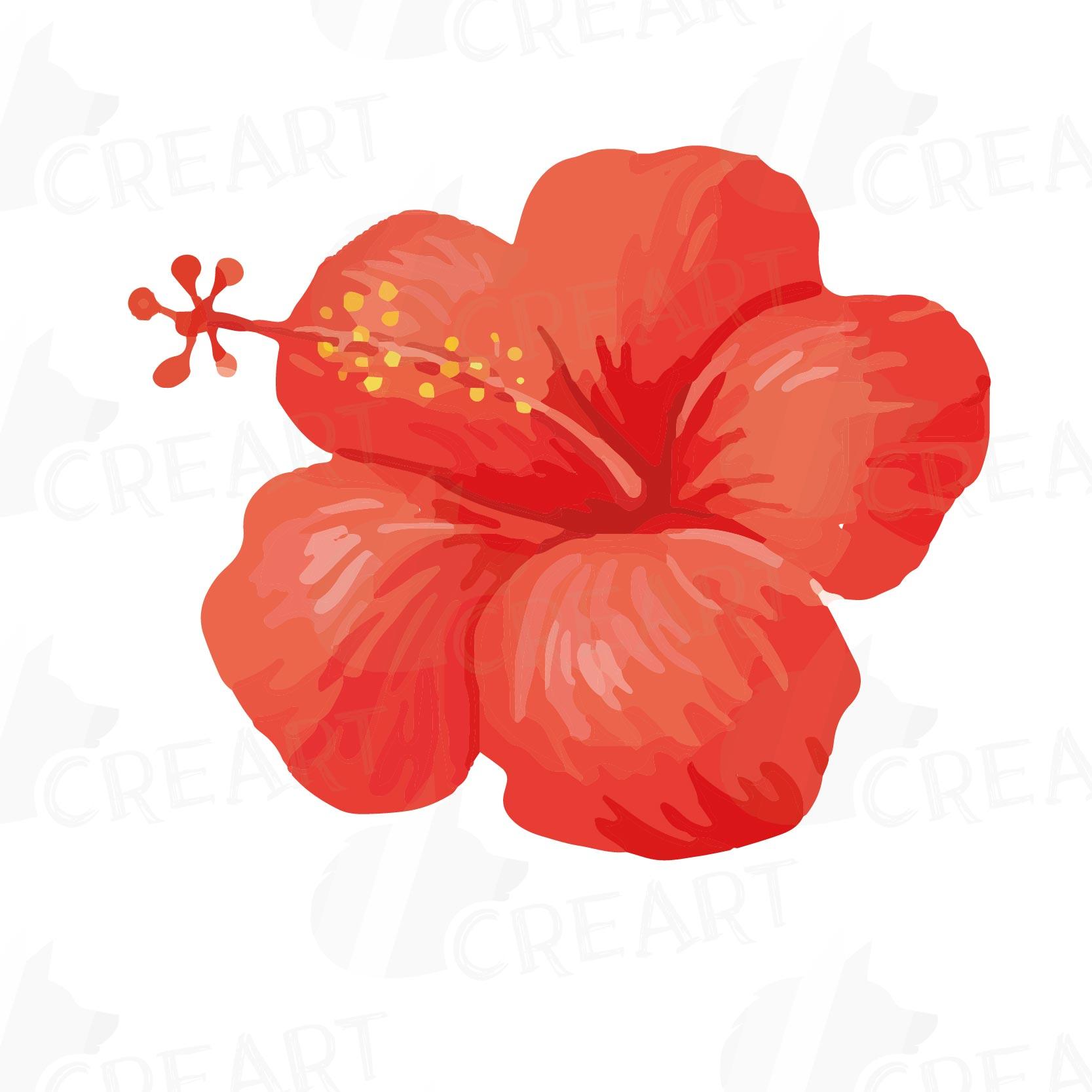 Watercolor wild flowers clip art pack, | Design Bundles