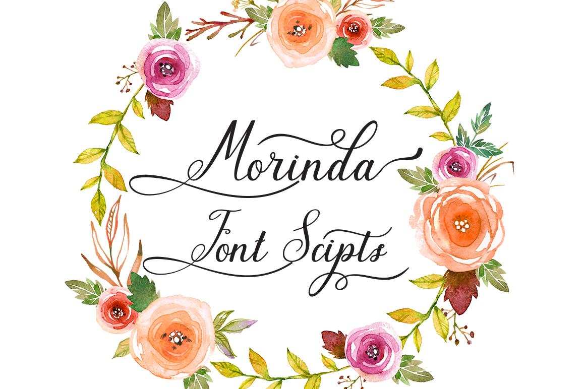 Morinda example image 5