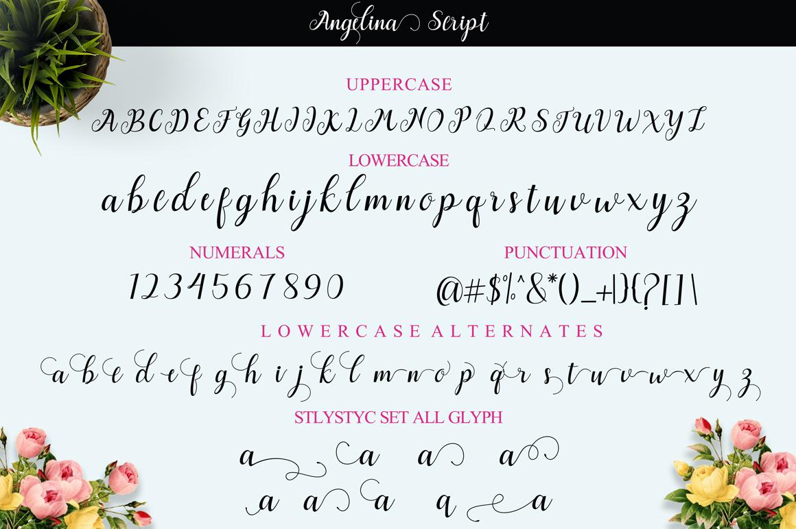 Angelina Script example 11