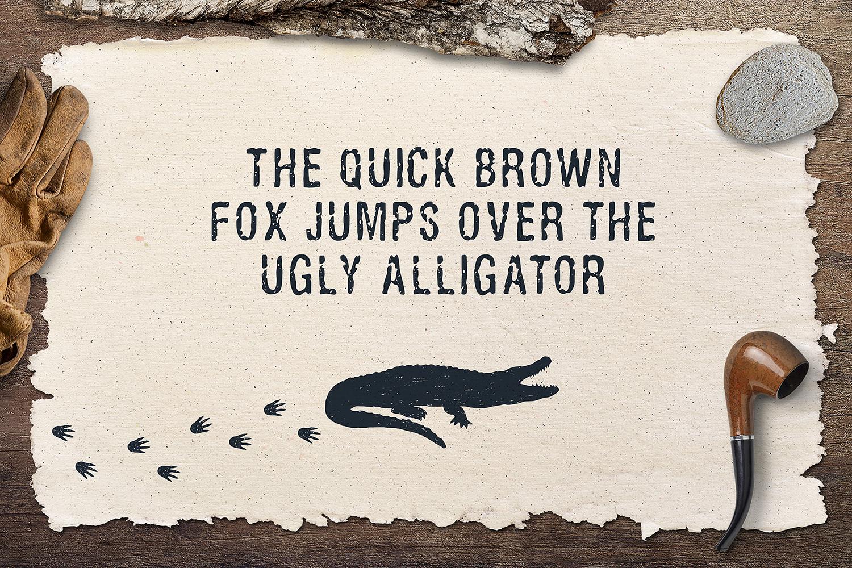 Ugly Alligator - Grunge Typeface example image 2