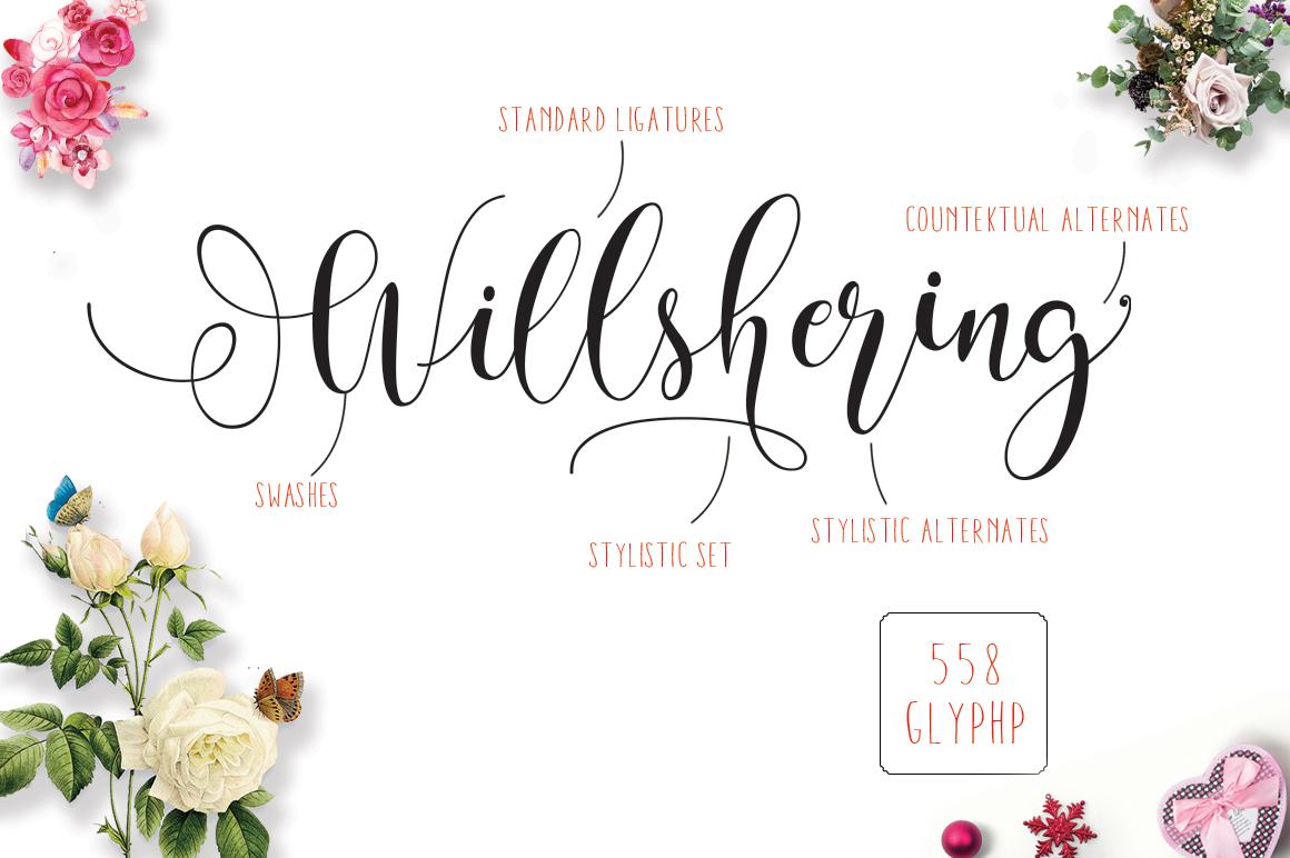 Willshering script example image 8