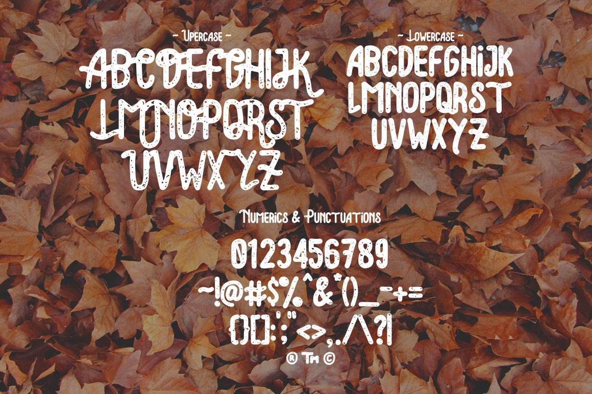 Lonsdale Typeface example image 4