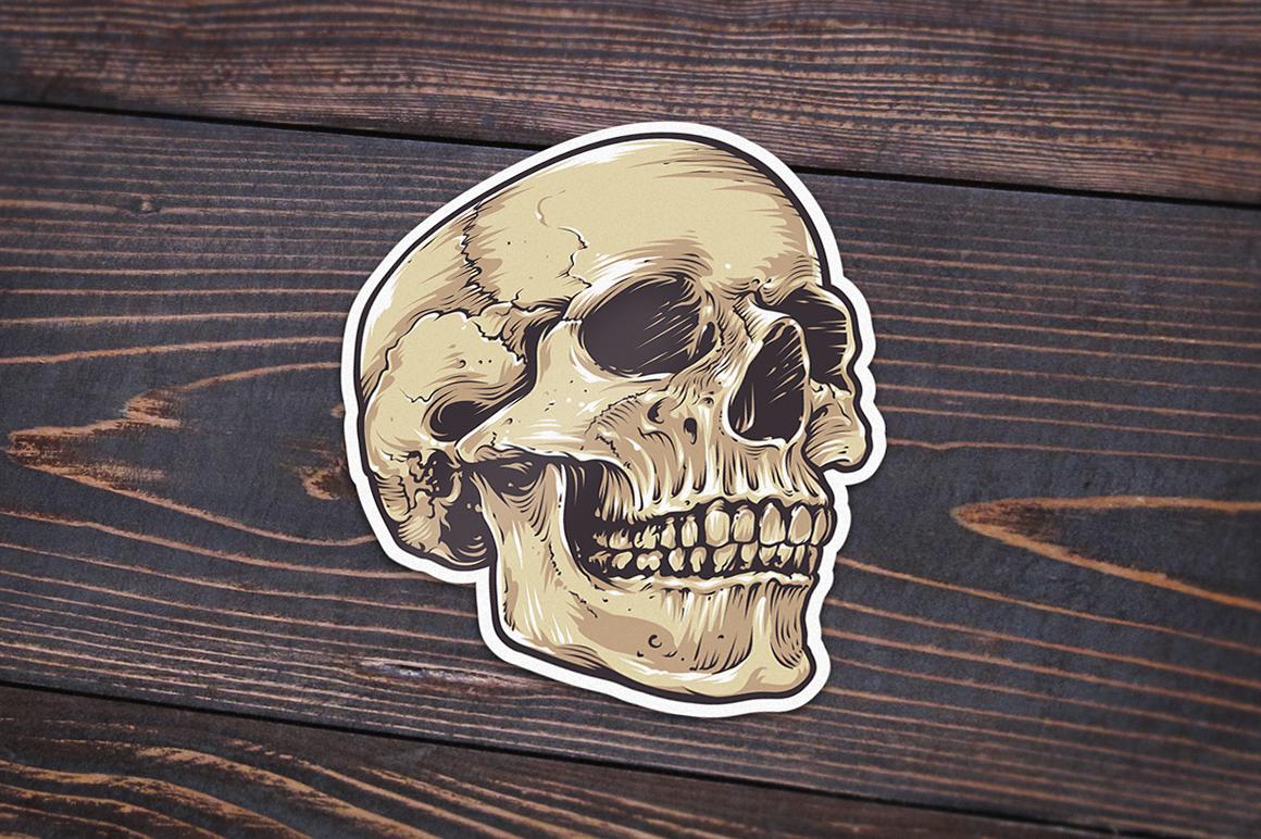 Anatomic Skulls | Vector Pack example image 9